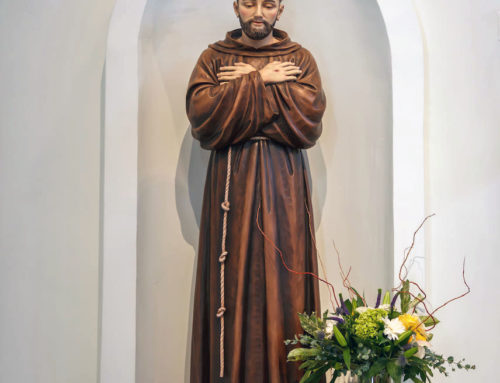 Celebrating Our Holy Father St. Francis